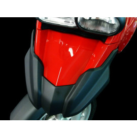 BMW Cover for Upper Fender F800GS