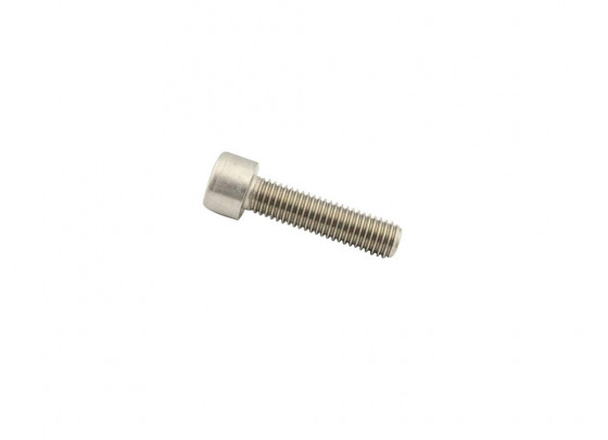 BMW Cylinder Screw M8x25
